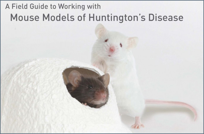 MouseGuide